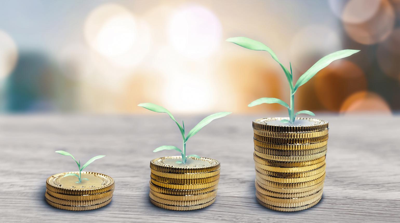 配当金を目的とした株式投資を検討しよう